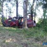 «Рено-19» и встретившее его дерево