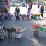 Свою цветочную выставку организовали и представители более старшего поколения