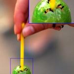 Чупа-чупсик с муравьишечками