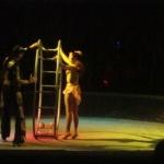 Цирк Russoli в Могилеве