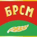 это флаг БРСМ