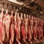 13 тонн говядины на сумму Br375 млн рублей