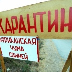 Фактов АЧС на Могилевщине не выявлено, но профилактика ведется
