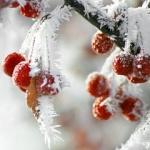 Температура воздуха опустится до 30-32 градусов мороза