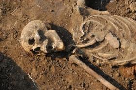 Работы проходят на территории бывшего кладбища