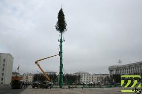 37-метровая конструкция будет состоять из 130 живых ёлочек