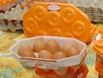 Яйца Д2