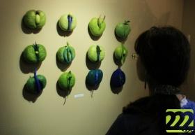 Выставка войлока Гуниллы Шёберг