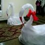 два лебедя-символ крепкой любви